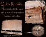 Nestbox-staple-repair-ILLUS - Copy.jpg